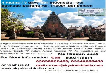 Bali tour package $225 per person