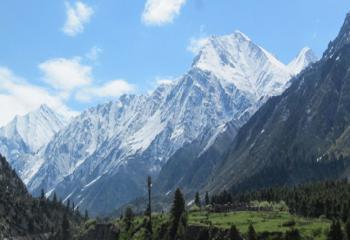 Chail Fagu Narkanda tour package